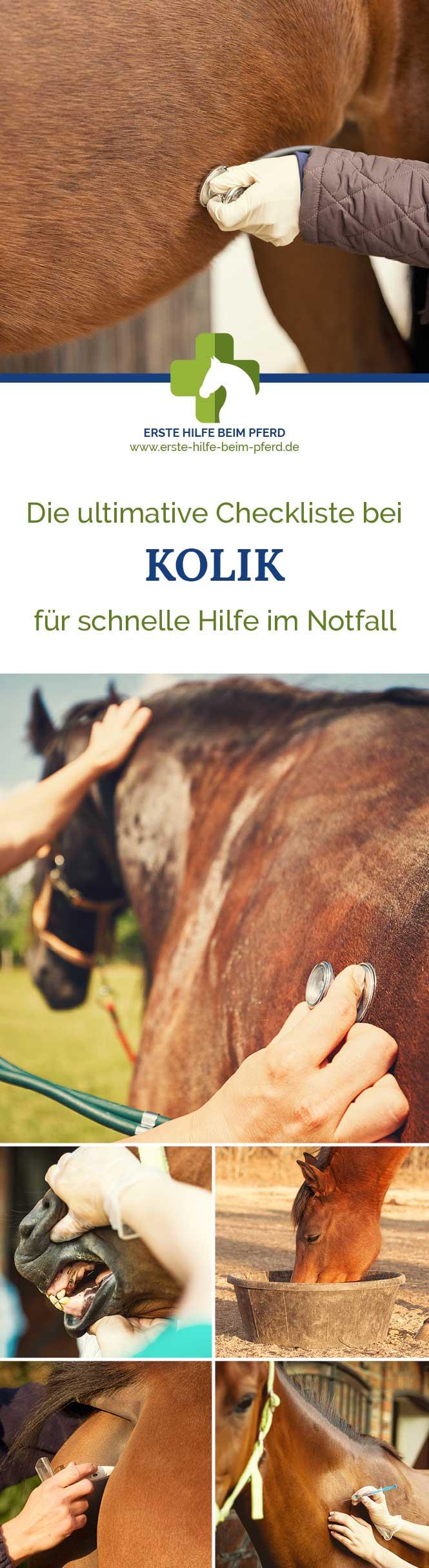 Checkliste für Kolik beim Pferd.