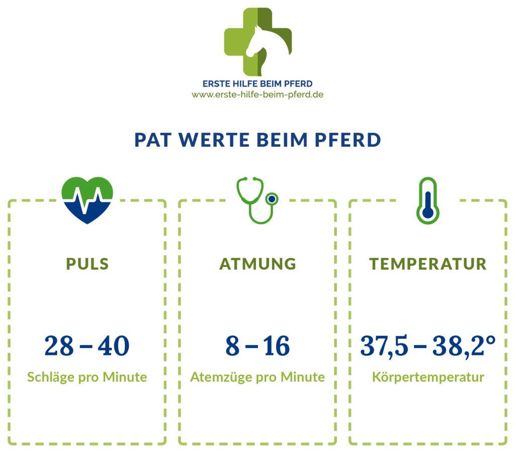 Puls, Atmung und Temperatur Werte beim Pferd