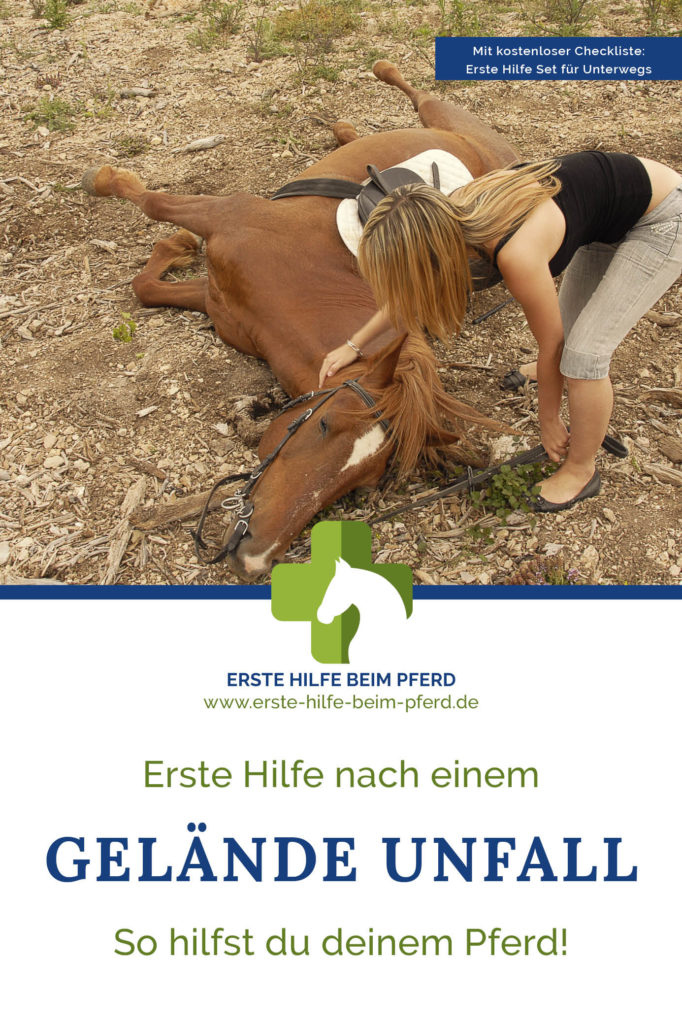 Erstehelfer beim Pferd im Gelände.