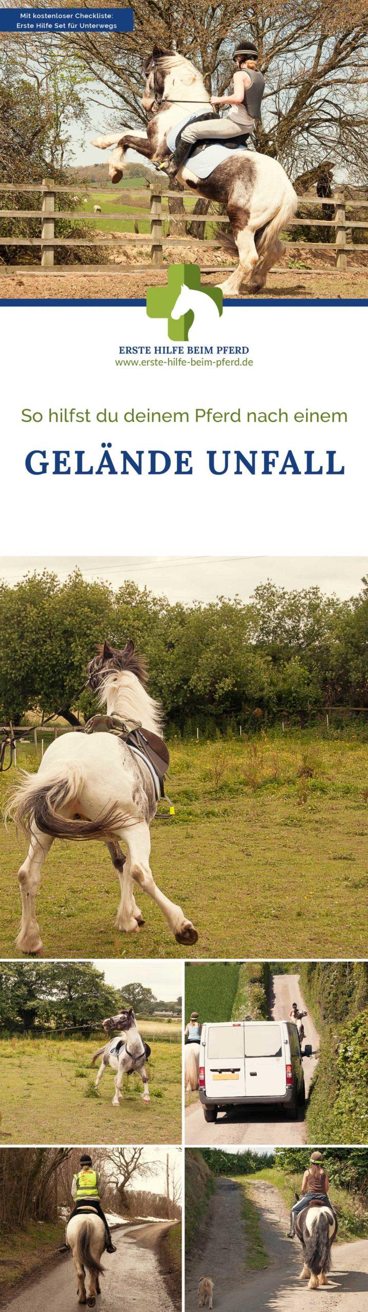 Gelände Unfall mit Pferd? So kannst du deinem Liebling Erste Hilfe leisten.