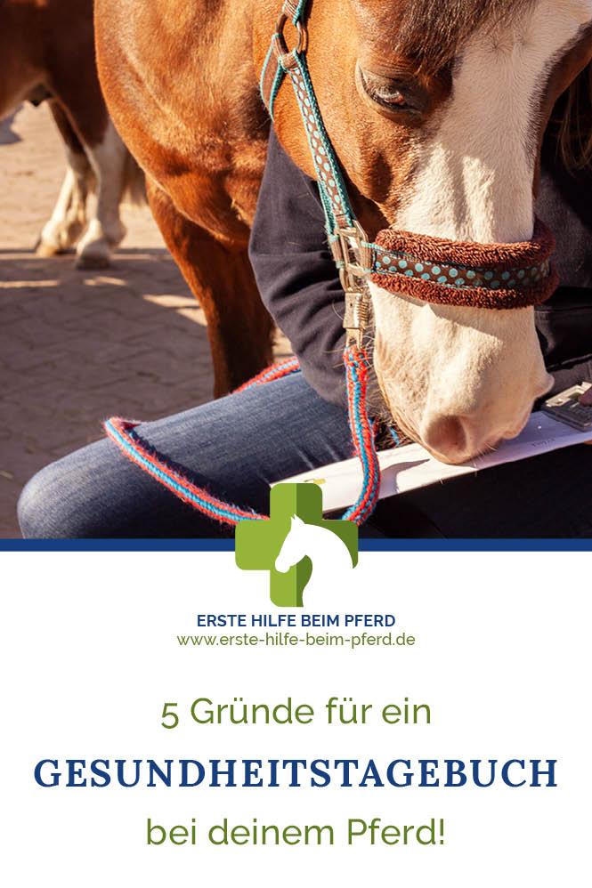 Viele Krankheiten beim Pferd erkennst du durch ein Gesundheitstagebuch für Pferde