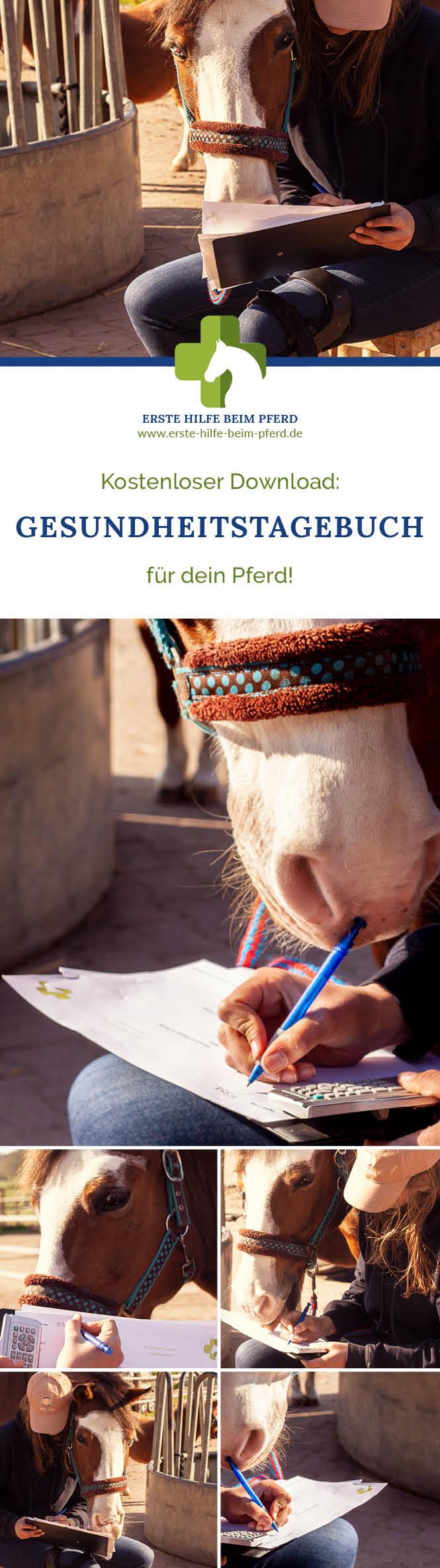 Gesundheitstagebuch Pferd kostenlos zum ausdrucken