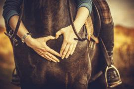 Schlundverstopfung beim Pferd