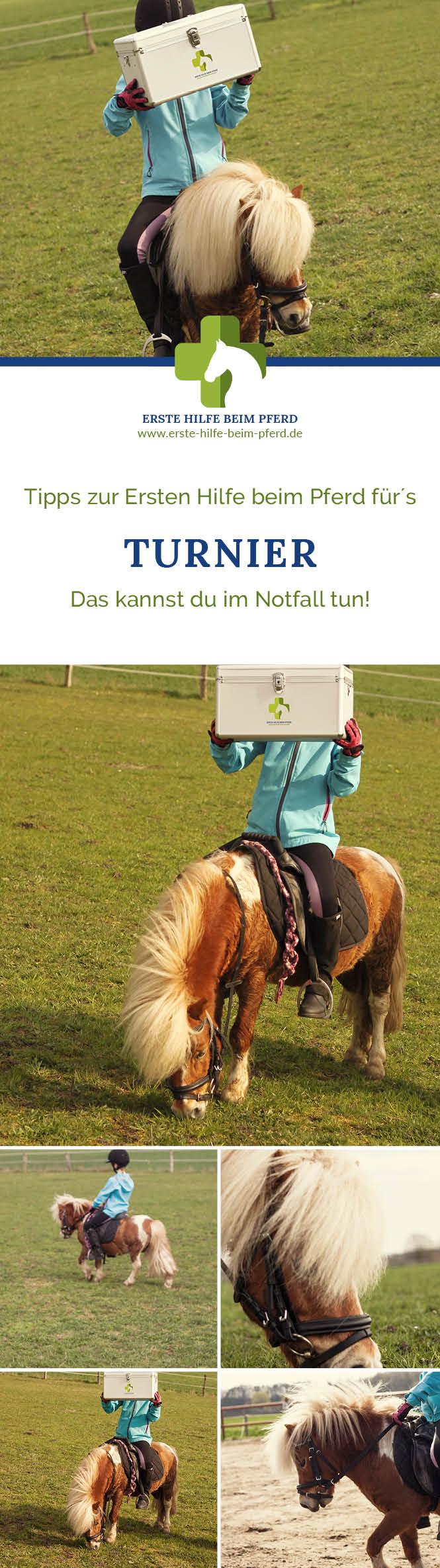 Tipps zur Ersten Hilfe beim Pferd für's Turnier